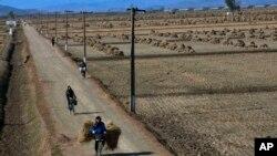 북한 황해북도 사리원 인근 농촌 풍경 (자료사진)
