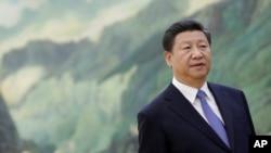 中國國家主席習近平(資料圖片)