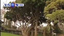 VOA美國60秒(粵語): 2012年6月22日