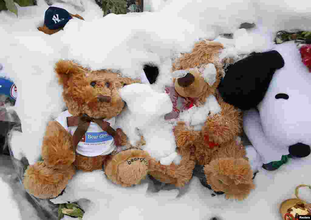 Stuffed bears are seen in the snow as part of a makeshift memorial at Edmond Town Hall in Newtown, approximately three weeks after a gunman shot dead 20 students and six adults at Sandy Hook Elementary, January 2, 2013.