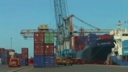 Plutajuće farme na prekookeanskim brodovima