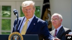 FILE - President Donald Trump gestures as he speaks in the Rose Garden of the White House, June 14, 2019.