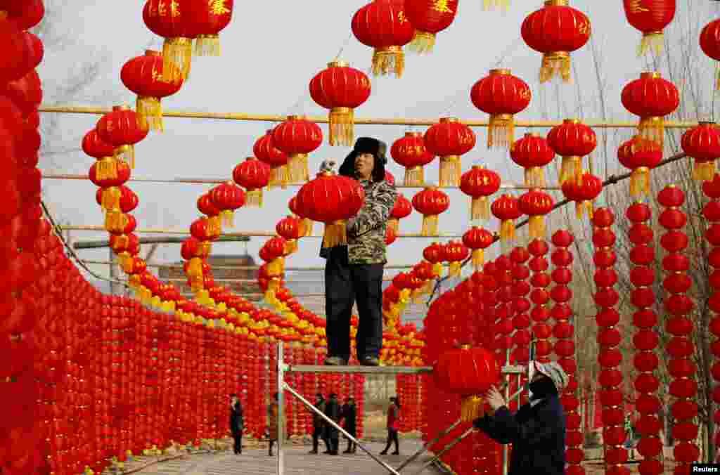 کارگران در چین مشغول آویزان کردن فانوس های قرمز به مناسبت فرا رسیدن سال نو چینی یا فستیوال بهار در آن کشور هستند.