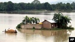 인도 북동부 아삼주의 폭우로 물에 잠긴 가옥에서 주민들이 탈출하고 있다.