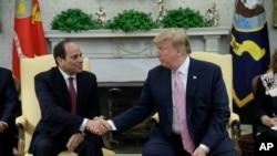 特朗普总统在白宫会晤埃及总统塞西。(2019年4月9日)