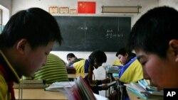 北京郊区一所农村小学校的学生在学习。(资料照片)