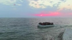 Беженцы в Европе: мнение профессора Пола Кольер