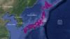 Japon : avis de risque de tsunami levé sur l'ensemble des zones concernées