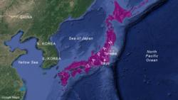ဂ်ပန္မွာ ၇.၃ ျပင္းအားငလ်င္ေၾကာင့္ ဆူနာမီသတိေပးခ်က္ ထုတ္ျပန္