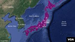 Peta perkiraan lokasi episentrum gempa bumi, dekat Tomioka, Jepang.