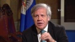 """La OEA no apoyará """"chanchadas antidemocráticas"""""""