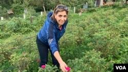 Dženana Balić u vrtu đulberšećerki.