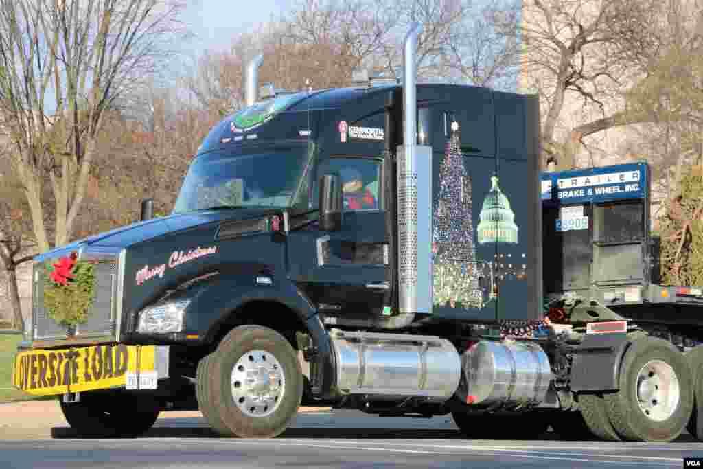 运送圣诞树的卡车(美国之音杨晨拍摄)