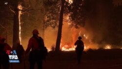 جنگ ۱۴ هزار آتشنشان با ۱۲ آتشسوزی بزرگ در ایالت کالیفرنیا