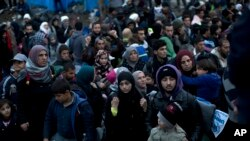 Migranti na granici Srbije i Hrvatske (arhivski snimak)