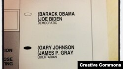 """Many Americans took pictures of their ballots before casting them. This was posted on <a href=""""http://www.flickr.com/photos/dbjb-net/8162198915/sizes/m/in/photostream/"""">Flickr</a>."""