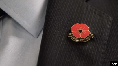 Us Marks First National Poppy Day