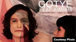 'Somebody That Used to Know' Gotye