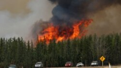 Interview with Mthokozisi Ndlovu, A Zimbabwean In Canada Displaced By Raging Wild Fires