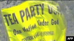 Các nhà hoạt động thuộc phong trào Tea Party