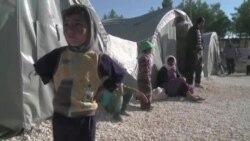 Зеленые технологии – в помощь беженцам