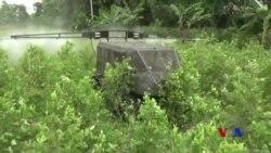 哥倫比亞使用新設備打擊毒品種植 (粵語)
