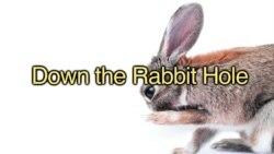 «Английский за минуту»: down the rabbit hole