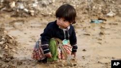 Casi tres millones de sirios más que el año pasado necesitan ayuda humanitaria, según la ONU.