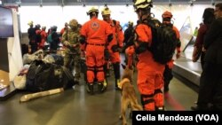 A group of 32 rescuers from Panama arrived with two canine rescuers to help find people trapped in collapsed buildings and dig them out. They arrived at the Benito Juárez International Airport in Mexico City, Sept. 20, 2017. (C. Mendoza/VOA)