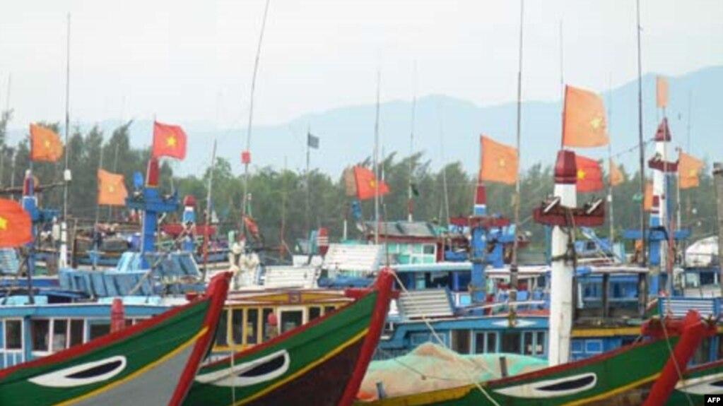 Các quốc gia này kêu gọi chính phủ Việt Nam phải có trách nhiệm quản lý các tàu cá.