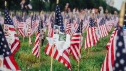 华盛顿国家大草坪广插上万国旗纪念国殇日