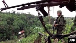 Koka tarlasını imha eden Venezüellalı askerler