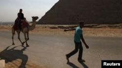 A man pulls a camel carrying a lone tourist at the Pyramids of Giza near Cairo October 19, 2011.