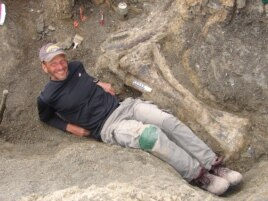 "Kenneth Lacovara, PhD, next to the tibia bone of Dreadnoughtus schrani, a new ""supermassive dinosaur species."""