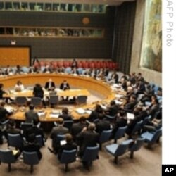 U.N Security Council session