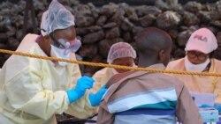 Le professeur Jean-Jacques Muyembe, spécialiste du virus Ebola, a pris la tête du comité d'experts chargé de la riposte au mois de juillet