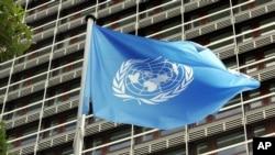 联合国旗帜