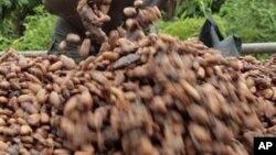 Le verger ivoirien est rajeuni, et la qualité s'améliore, affirme le Premier ministre ivoirien Daniel Kablan Duncan
