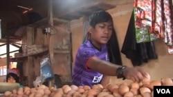 Telur ayam merupakan salah satu komoditas kebutuhan pokok yang mengalami kenaikan cukup tinggi (foto: VOA/R. Teja Wulan).