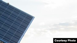 Solar collector pane