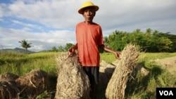 Las políticas económicas impulsadas por el FMI y el BM, el cambio climático y la inestabilidad política son parte de las causas del hambre en países en desarrollo.