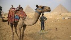 L'Egypte s'apprête à rouvrir aux visiteurs ses sites touristiques