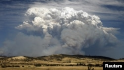 Smoke from wildfires is seen east of Hobart in the Australian island state of Tasmania January 4, 2013.