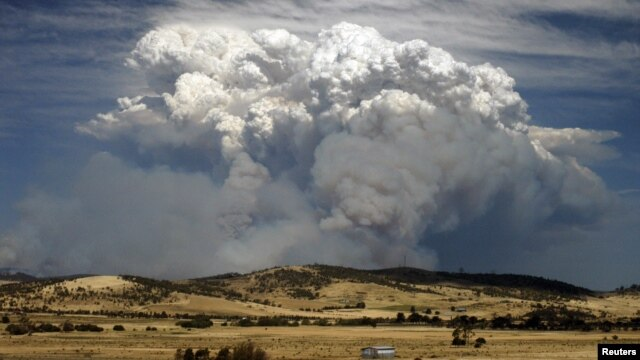 Asap tampak mengepul di atas kawasan hutan yang terbakar di Tasmania, Australia (4/1).