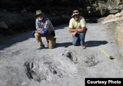 Researchers Martin Lockley, right, and Ken Cart pose beside large a dinosaur scrape they discovered in western Colorado. (Credit: University of Colorado-Denver)
