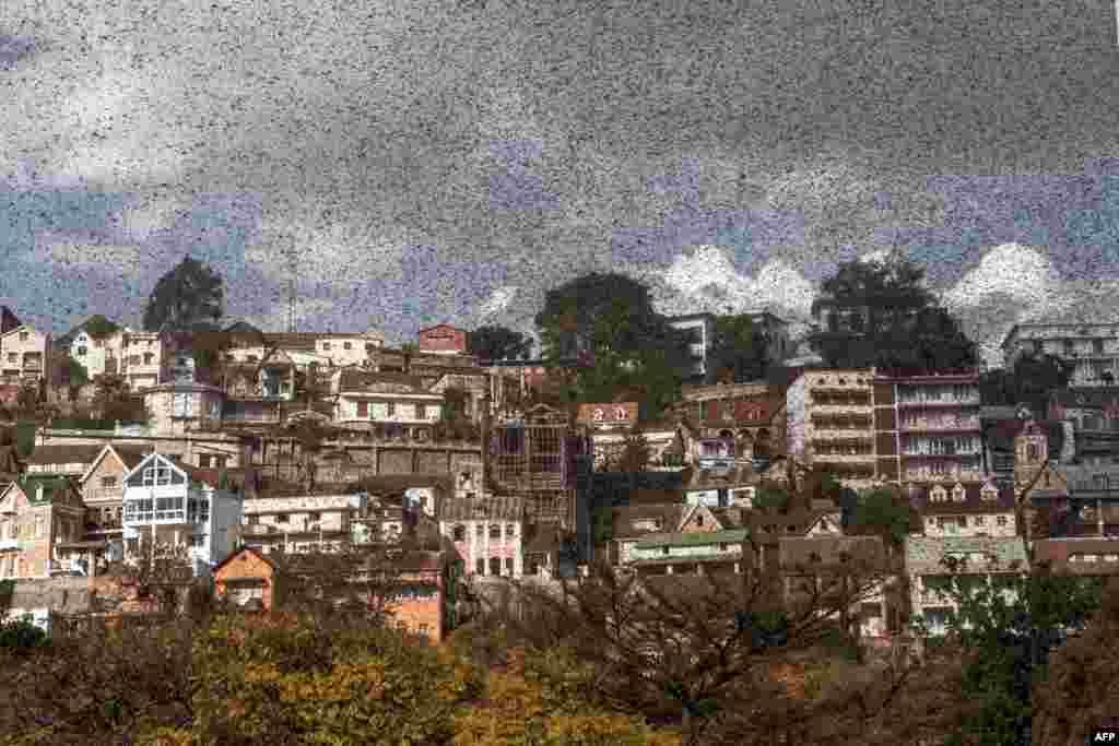 Một đàn châu chấu ập vào trung tâm thủ đô Antananarivo của Madagascar.