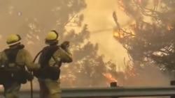 Cháy rừng diện rộng, cấp độ mạnh là mối nguy mới của thế giới