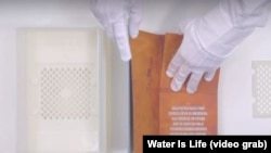 The Drinkable Book was developed to filter polluted water.