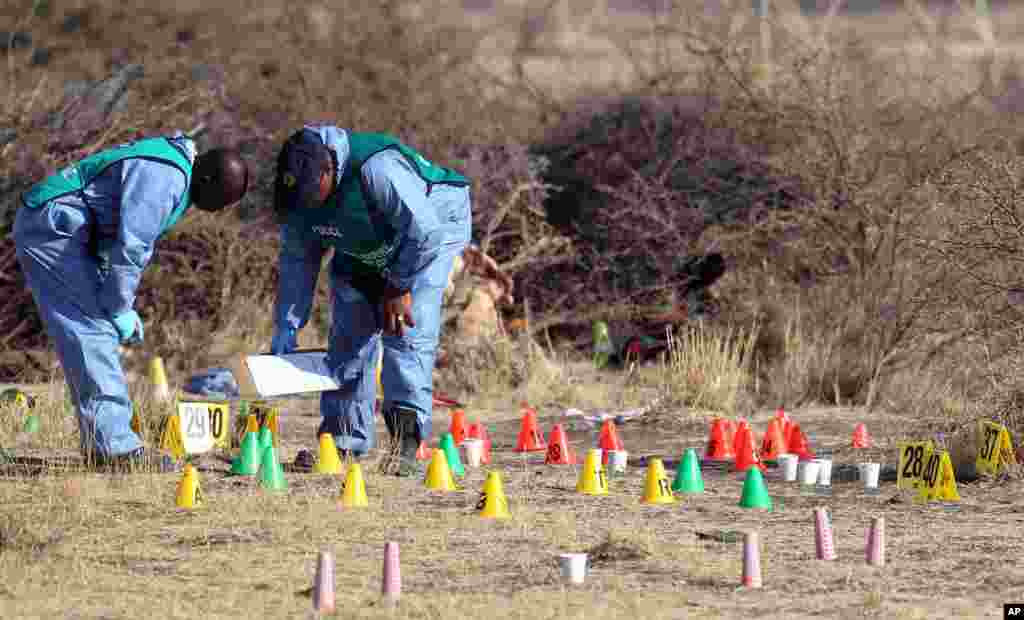 Members of a South African police crime unit investigate the scene of the shooting of miners at the Lonmin mine near Rustenburg, South Africa, August 17, 2012.