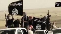 داعش، یک سال پس از پیدایش